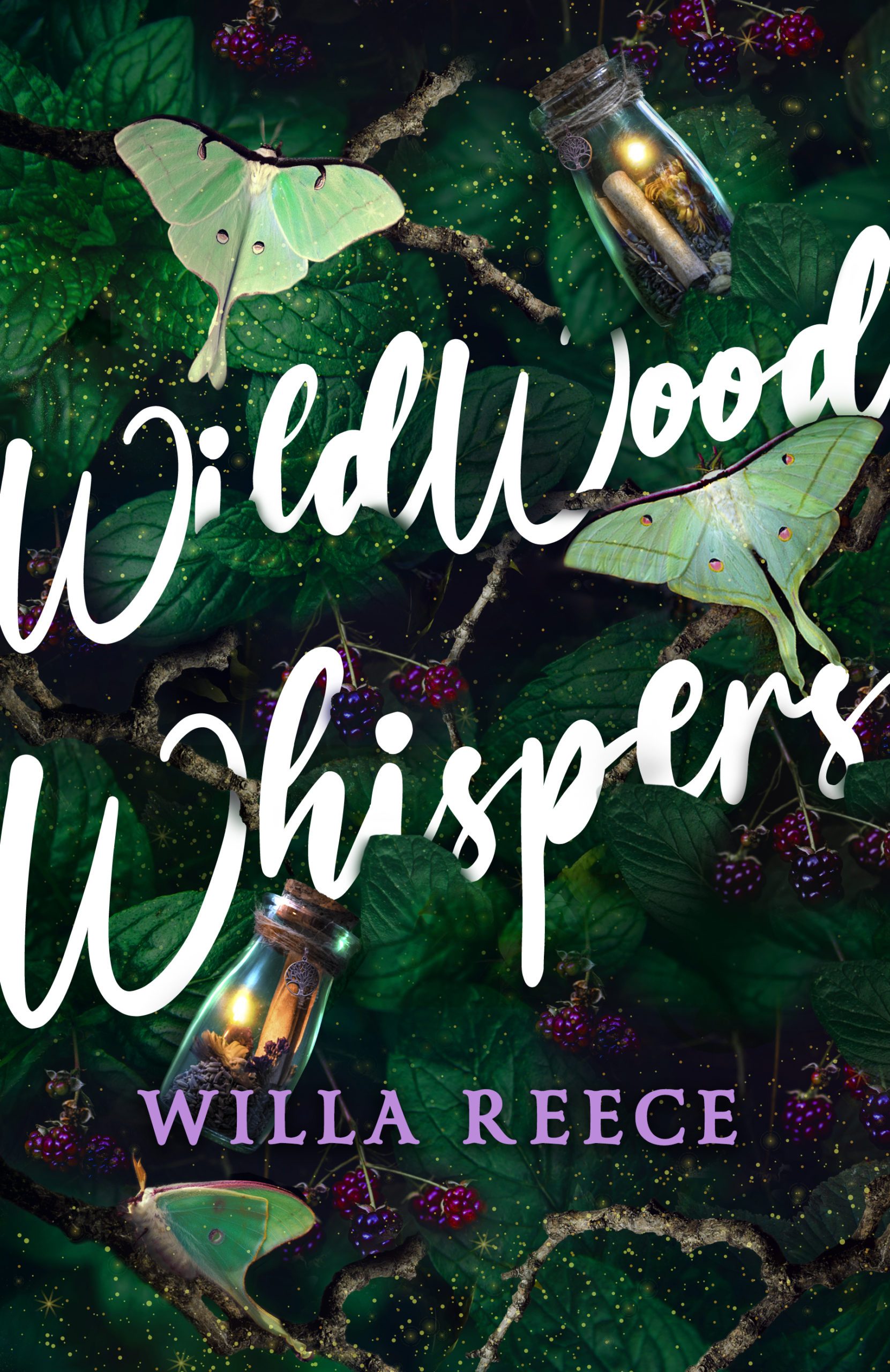 Cover Launch: WILDWOOD WHISPERS by Willa Reece